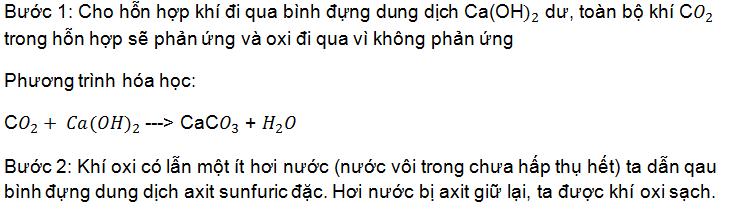 hóa 9