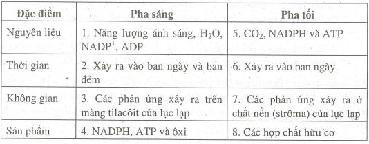 Bài 9 Quang hợp ở các nhóm thực vật C3, C4 và cam