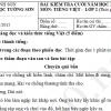 Bài kiểm tra cuối năm Tiếng Việt lớp 2